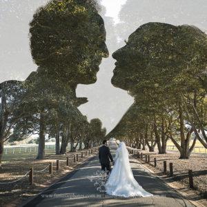 Wedding Photography Dame Edith Estate Concord | Fantasie Photography